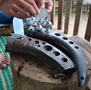 Carved water buffalo horn forms for casting silver half-moons and circles.