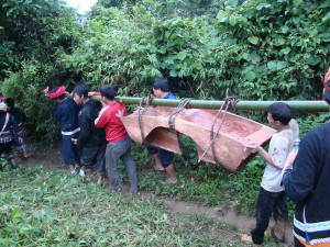 After spiritual cleansing, the rough coffin top is carried back to the village.