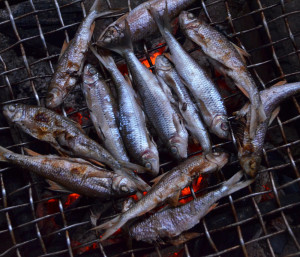 Fish grilling in preparation for laap.