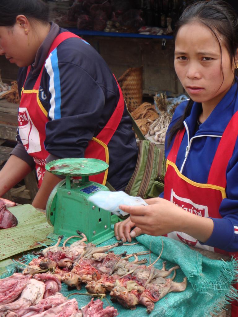 Fresh meat vendors in Laos.