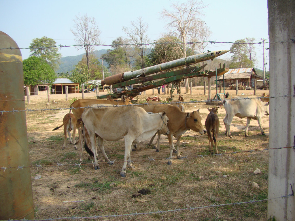 Cows grazing in front of a Soviet ground to air missile used in the Vietnam/American war and behind a fence made in part from bomb casings.