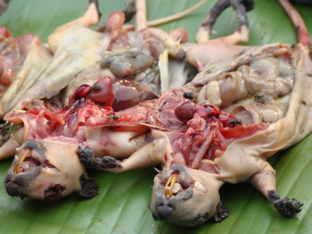 Fresh, Laos rats with juicy guts exposed.