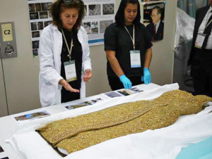 A textile preservationist and her assistant at the Queen Sirikit Textile Museum showing one of the Queen's dresses – made of   gold-wrapped silk thread – gorgeous!  Photo courtesy of John Ang.