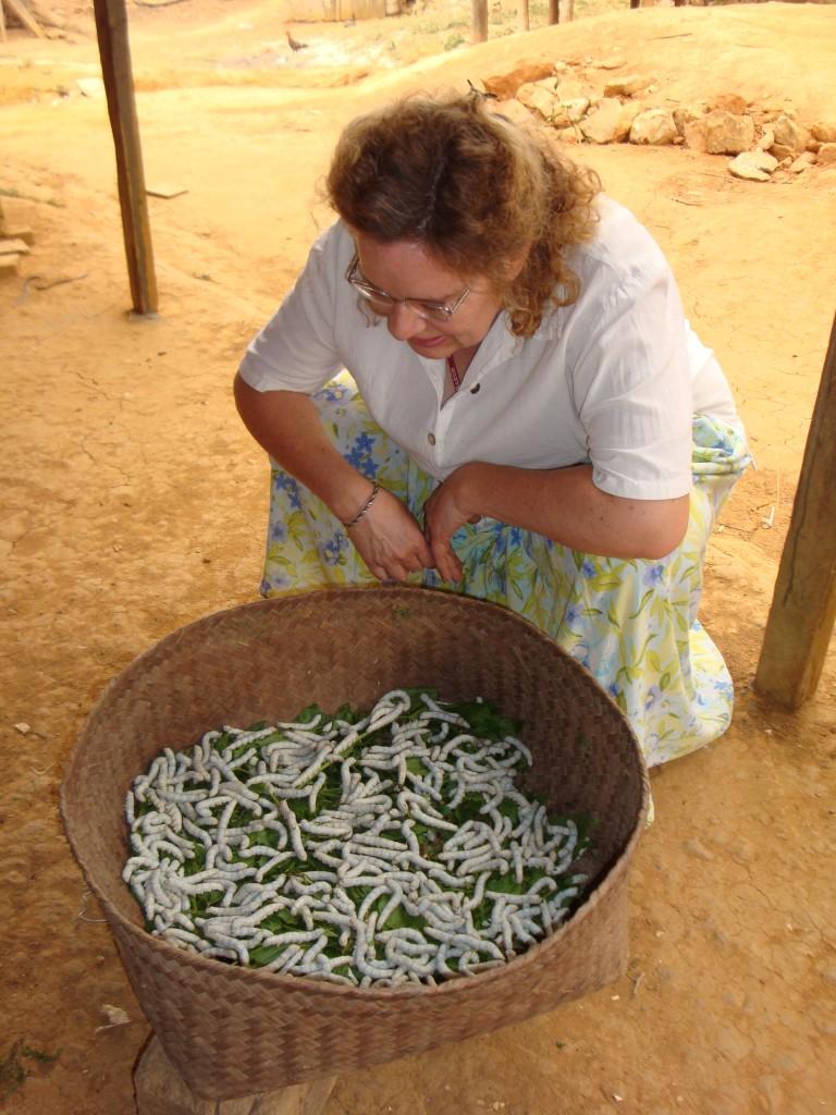 Maren checks out the crop for the upcoming silk-weaving season.