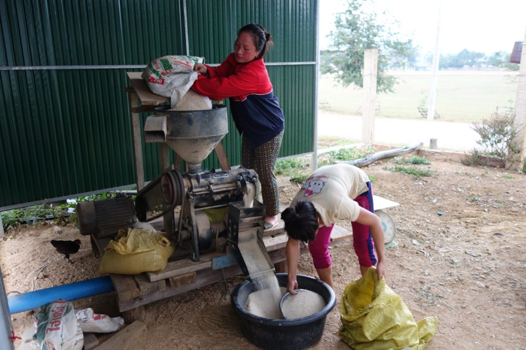 Efficient gas-powered rice threshing machines are available in all villages.